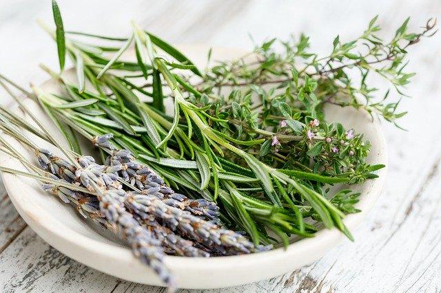 Víte, jak užívat léčivé bylinky, aby byly skutečně ku prospěchu?